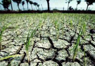 Kekeringan Melanda, Gubernur Jabar Ajak Masyarakat Laksanakan Sholat Minta Hujan Di tempat Masing-masing